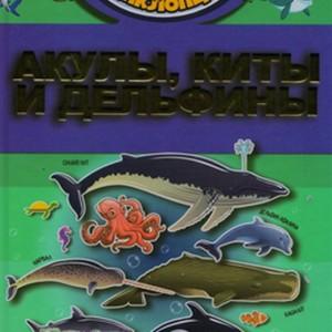 Детская научно-популярная энциклопедия. Акулы, киты и дельфины