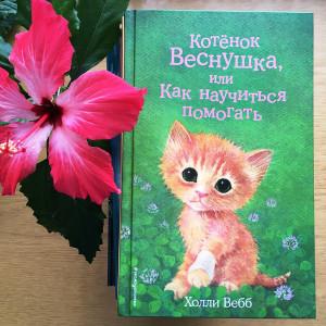О кошках, котах и котятах. Фото 1